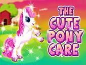 уход за пони